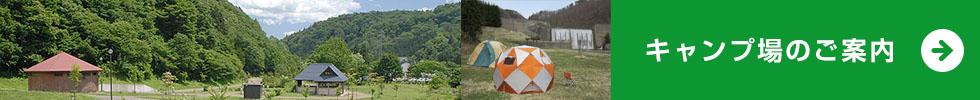 キャンプ場のご案内