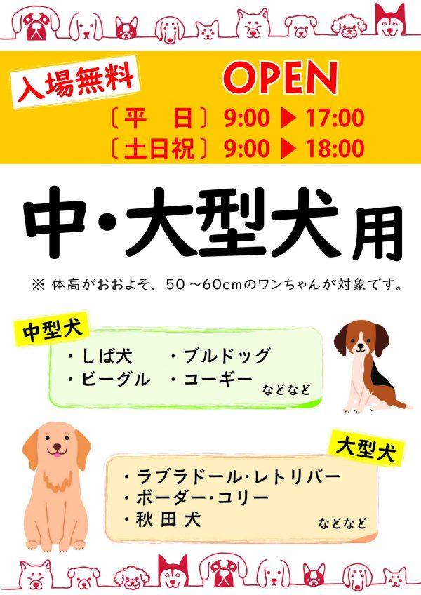 中&大型犬
